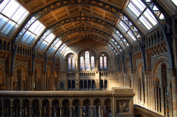 Central Hall of Natural History Museum