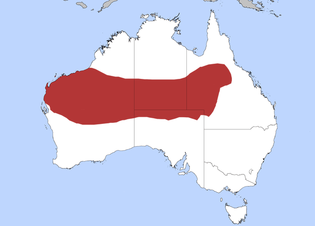 distribution of perentie in land down under