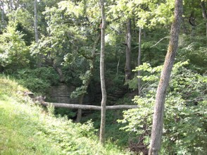 The Ravine Next to Laura's Home at Rocky Ridge