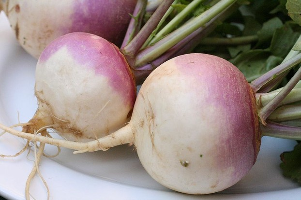 turnips (Brassica rapa): both roots and greens participate wonderfully in soups.