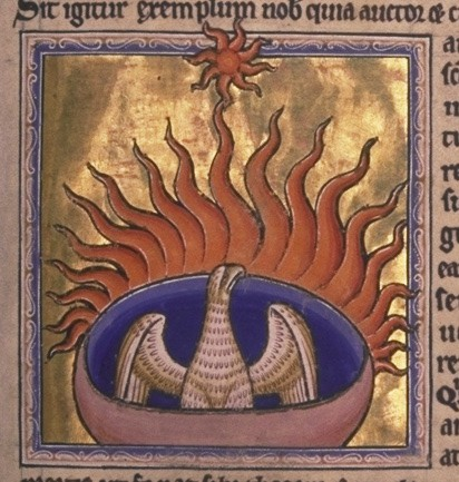 Phoenix rising from its fiery ashes