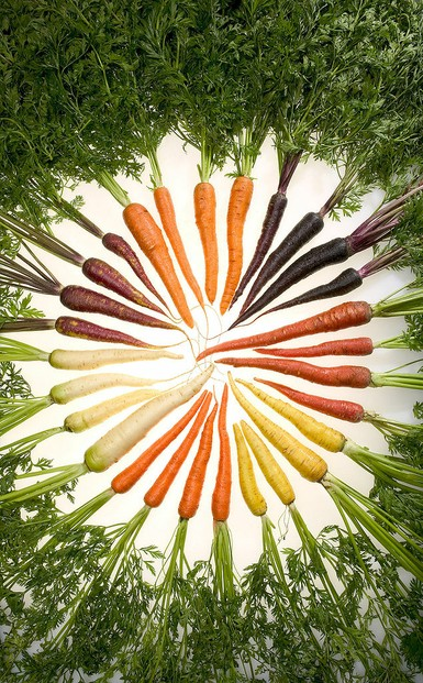"""Carrots of many colors"""