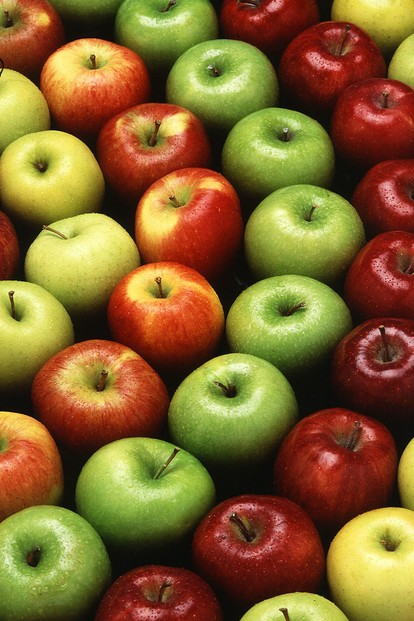 """Apples are an all-American success story-each of us eats more than 19 pounds of them annually."""