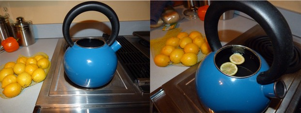 Remove mineral buildup in teapot