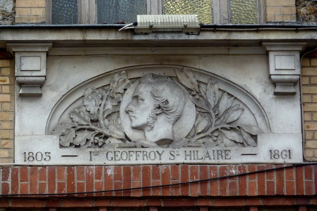architectural medallion, Rue Brancion, former Vaugirard horse market and slaughterhouse, Paris, 15th arrondissement