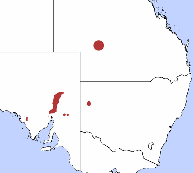 Marsupialia distribution map