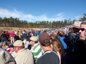 Crowds on the Union Side of Olustee Battlefield