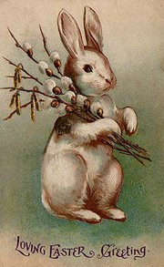 The Image Of An Easter Bunny Postcard From 1907