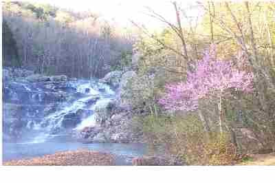 """Redbuds add even more beauty to Rocky Falls in the springtime."""