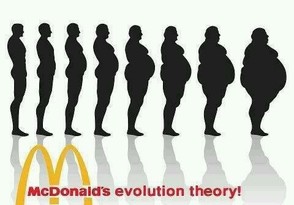 McDonald's Theory of Evolution