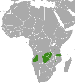 Distribution data from IUCN Red List