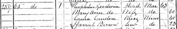 Image: Laura Landon in the 1871 Census