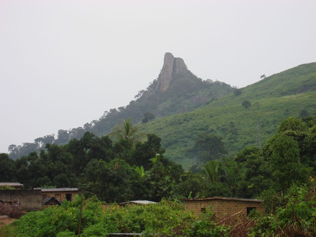 La Dent de Man: Volcanic plug in native forest and plant habitat, western Côte d'Ivoire