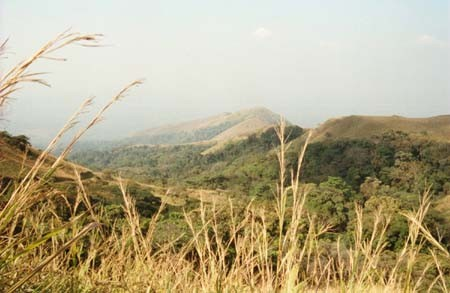 landscape of Mount Nimba: views of Côte d'Ivoire, Guinea, and Liberia.
