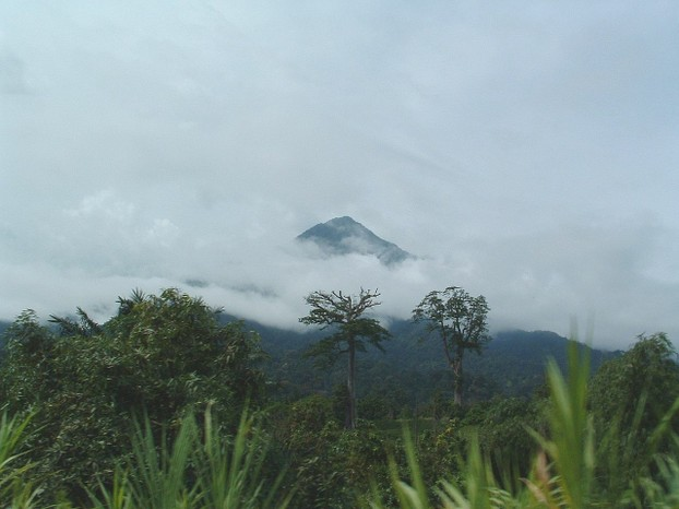 Little Mount Cameroon, a peak on Mt. Cameroon's southern flank, also known as Etinde: view from the road of Limbe,
