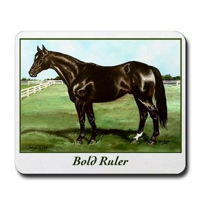 Preakness winner Bold Ruler, painted by Terry McNamee