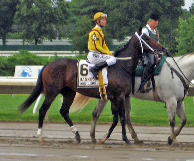 Preakness winner Rachel Alexandra prior to the Haskell Invitational