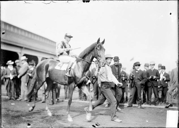 Flocarline, the first filly to win the Preakness.