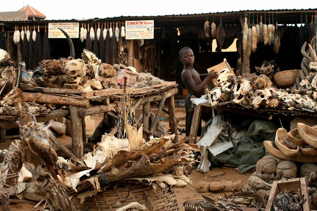voodoo fetish market in Lomé, capital, chief port, and administrative/industrial center perfectly sited in southwestern Togo on Gulf of Guinea.