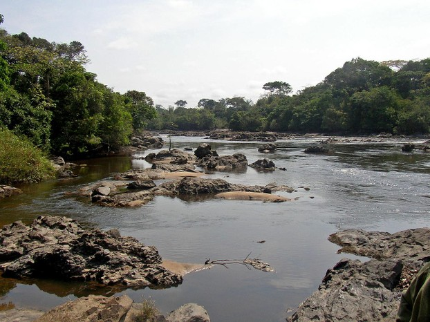 Epulu River flowing through Okapi Fauna Reserve, Democratic Republic of the Congo