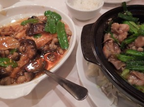 Authentic chinese food vs americanized chinese food for Authentic cantonese cuisine