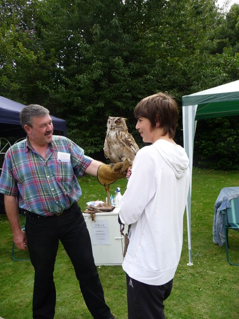Falconry Day at Arundel Castle Summer Event