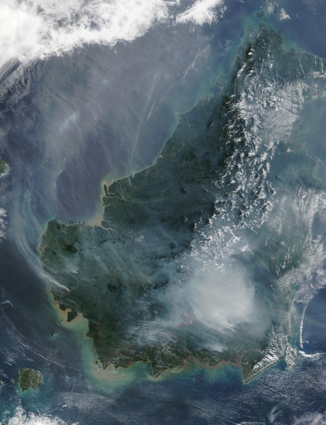 Satellite image of the island of Borneo on August 19, 2002, showing smoke from burning peat swamp forests.