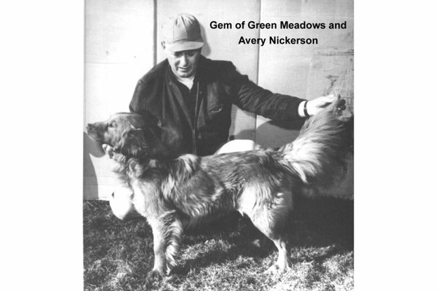 Avery Nickerson with his Toller, Gem of Green Meadows (Champ), early 1960s