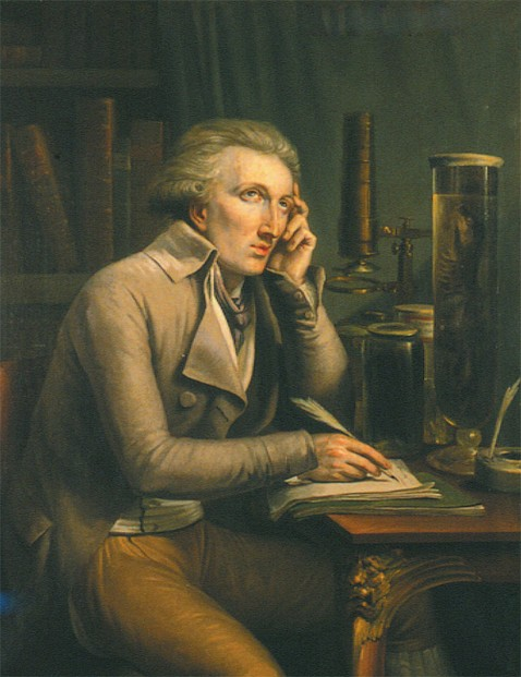 portrait by Mattheus Ignatius van Bree (February 22, 1773 - December 15, 1839)