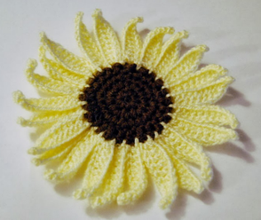 Sunflower and Petals