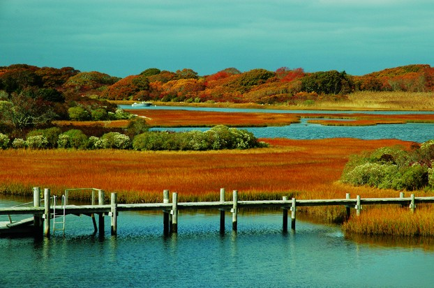 Up Island Autumn, Martha's Vineyard