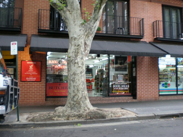 Macleay Street, Potts Point, eastern Sydney suburb, New South Wales, southeast Australia