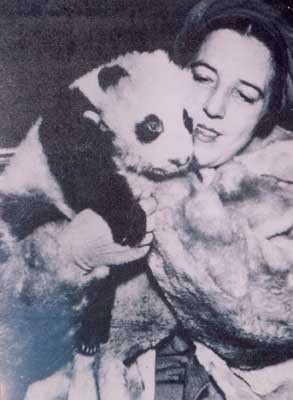 """Mrs. Harkness Returns Minus Panda,"" The China Journal, Vol. XXIX, No. 2 (August 1938)"