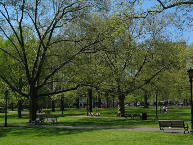 Upper New Haven Green in spring, New Haven County, southwestern Connecticut