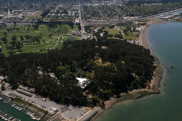 Coyote Point Park, with distinctive covering of eucalyptus grove, Burlingame/San Mateo border, San Francisco Bay Area