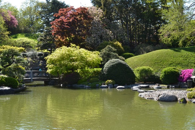 The Japanese Hill-and-Pond Garden is the first Japanese garden created in the United States, in 1914-1915.