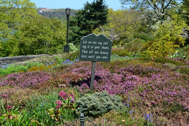 Gardens of wildflowers and spring blooms provide a dazzling display of colors.