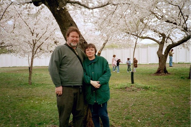 Us Among the Cherry Trees
