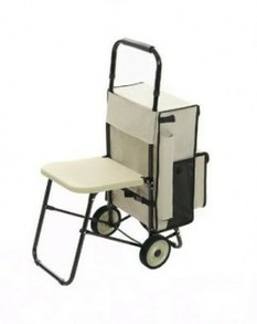 Pull Trolley with Pull-Out Seat (link above)
