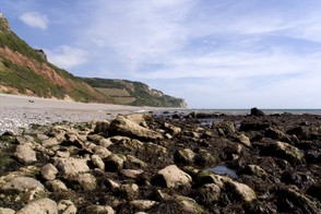 Branscombe, showing the sloping cliffs
