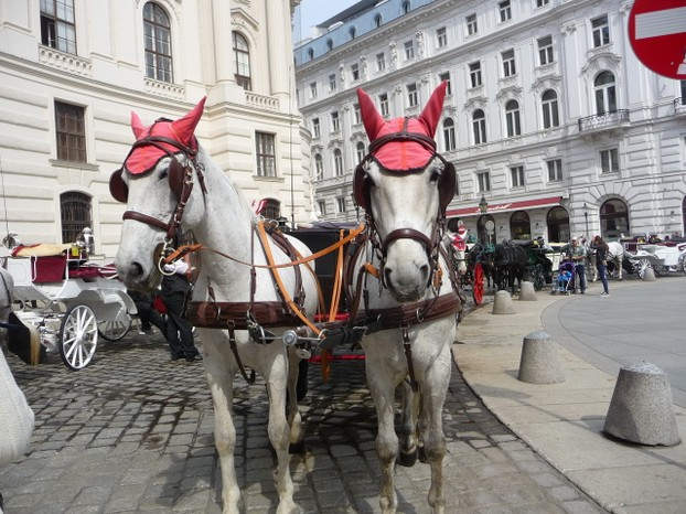 Hofburg Palace with Horse and Carriage, Vienna