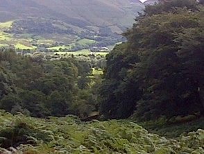 looking down the vale