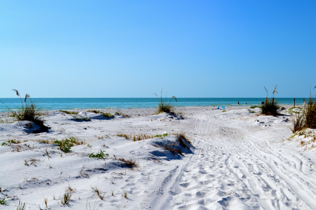 Blue skies and beautiful vistas at North Beach in Fort De Soto Park.