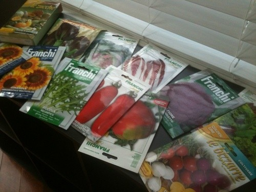 My seeds arrived