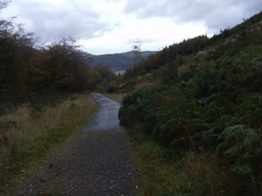 The paths to the Bassenthwaite Lake