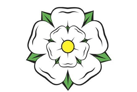 A white Yorkshire rose