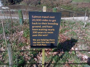 Information Board re Fish Pass
