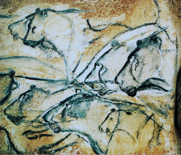 Lions painted in the Chauvet Cave