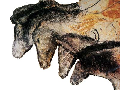Horses in Chauvet Cave