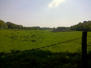 Cheshire land is very very green